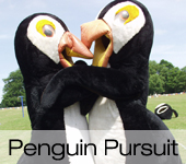 Penguin Pursuit Its a Knockout Games